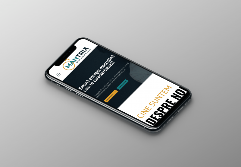 innvision.ro-portofoliu-mantrix-24